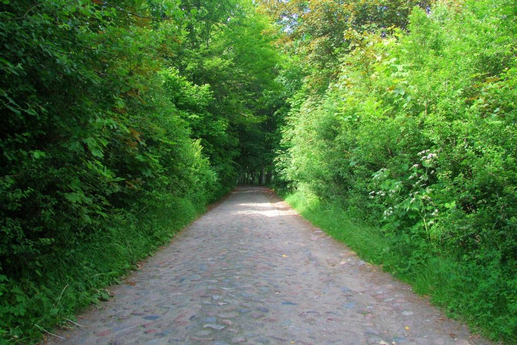 Trudna – Rozwory road